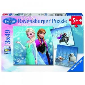 DFZ: Abenteuer im Winterland 3 x 49 Teile Puzzle