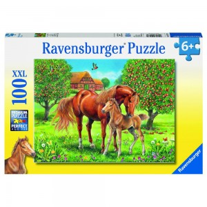 Pferdeglück auf der Wiese Puzzle 100 Teile XXL