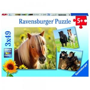 Liebe Pferde 3 x 49 Teile Puzzle