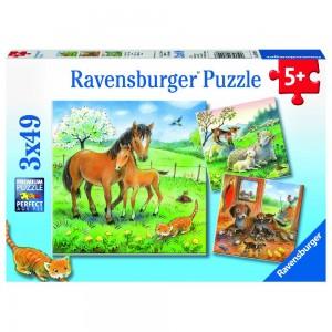 Kuschelzeit 3 x 49 Teile Puzzle