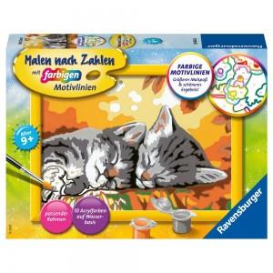 Kätzchen im Herbst MnZ Serie E